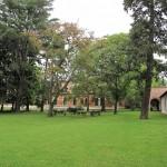 jardingaleria3